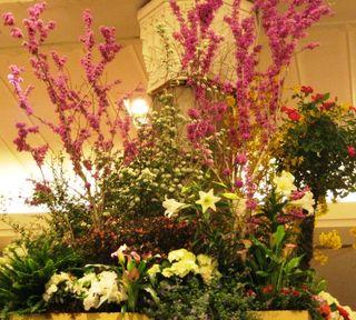 Macys Flower Show 3